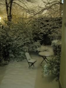 Mon Jardin d'Hiver